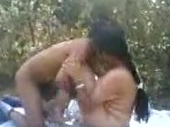 Indian chick drilled in a field